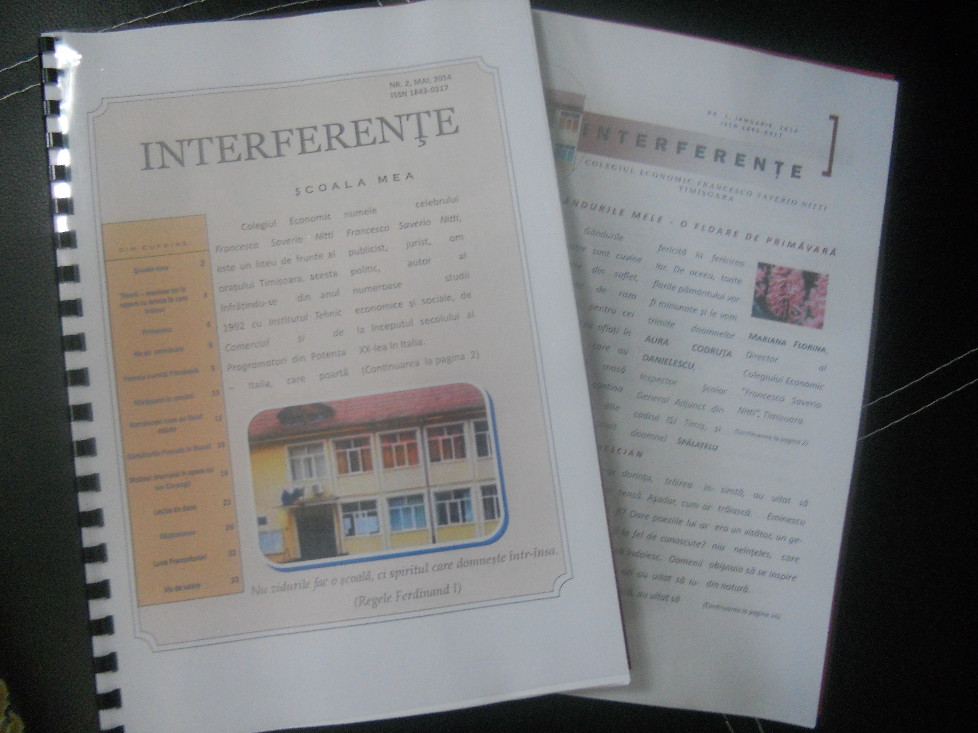 revista-interferente